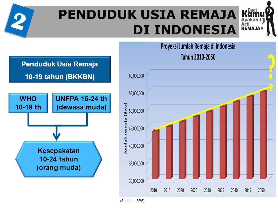 (Sumber : BPS) 2 2 Penduduk Usia Remaja 10-19 tahun (BKKBN) WHO 10-19 th UNFPA 15-24 th (dewasa muda) Kesepakatan 10-24 tahun (orang muda)