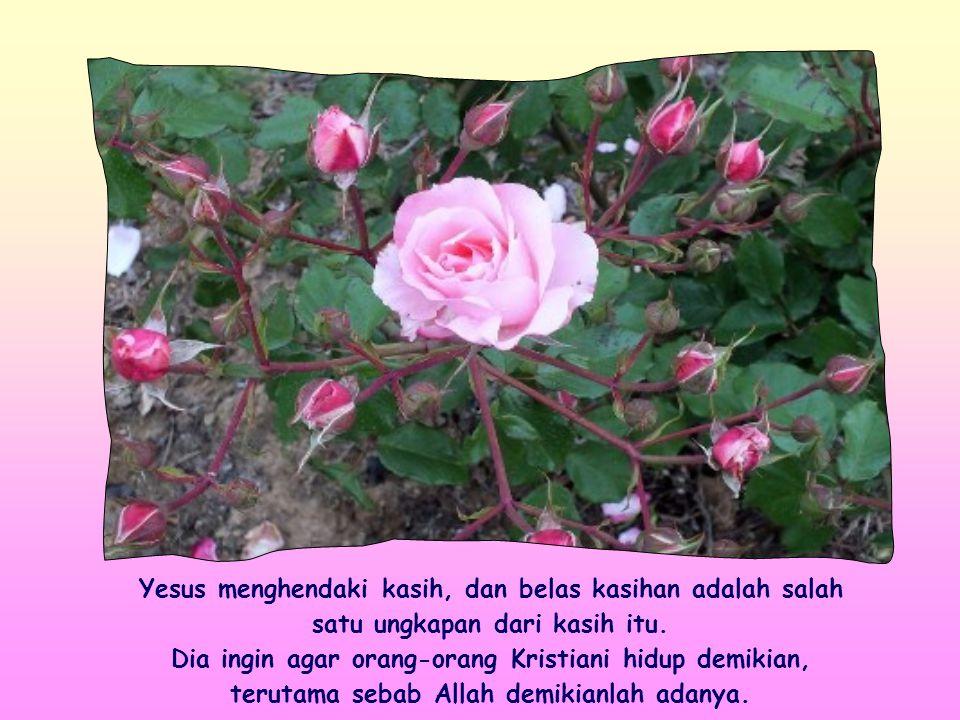 … Yang Kukehendaki ialah belas kasihan dan bukan persembahan .