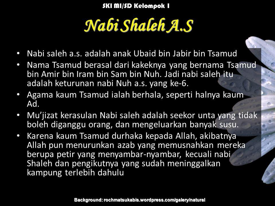 Nabi Shaleh A.S Nabi saleh a.s.