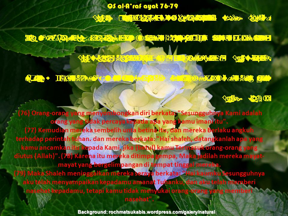 (76) Orang-orang yang menyombongkan diri berkata: Sesungguhnya Kami adalah orang yang tidak percaya kepada apa yang kamu imani itu .