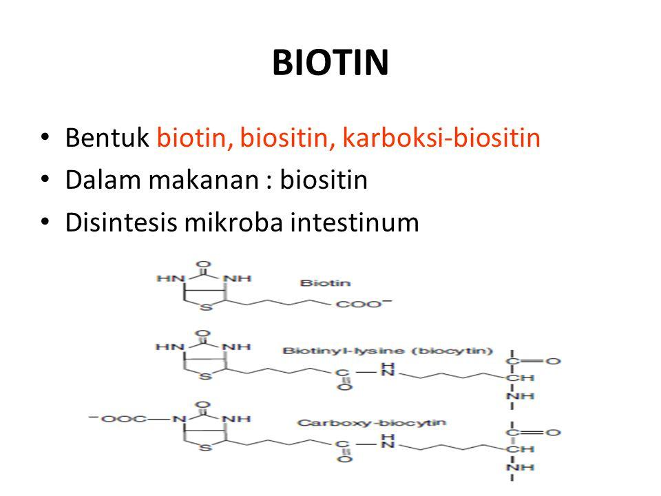 BIOTIN Bentuk biotin, biositin, karboksi-biositin Dalam makanan : biositin Disintesis mikroba intestinum