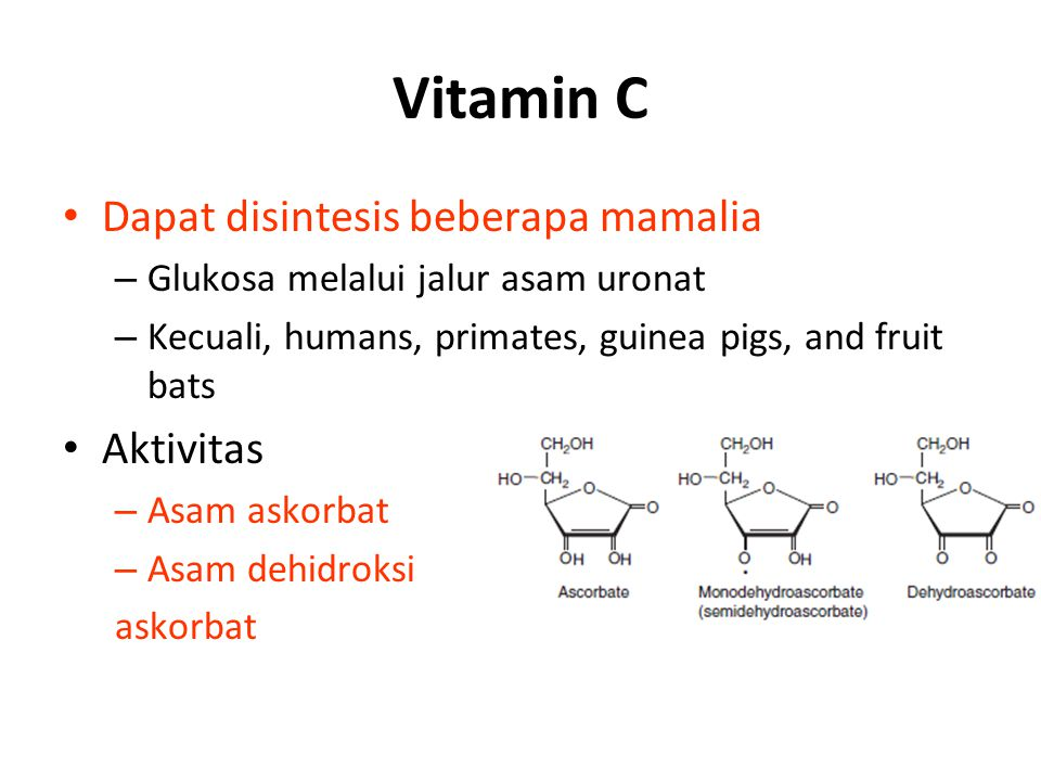 Vitamin C Dapat disintesis beberapa mamalia – Glukosa melalui jalur asam uronat – Kecuali, humans, primates, guinea pigs, and fruit bats Aktivitas – Asam askorbat – Asam dehidroksi askorbat