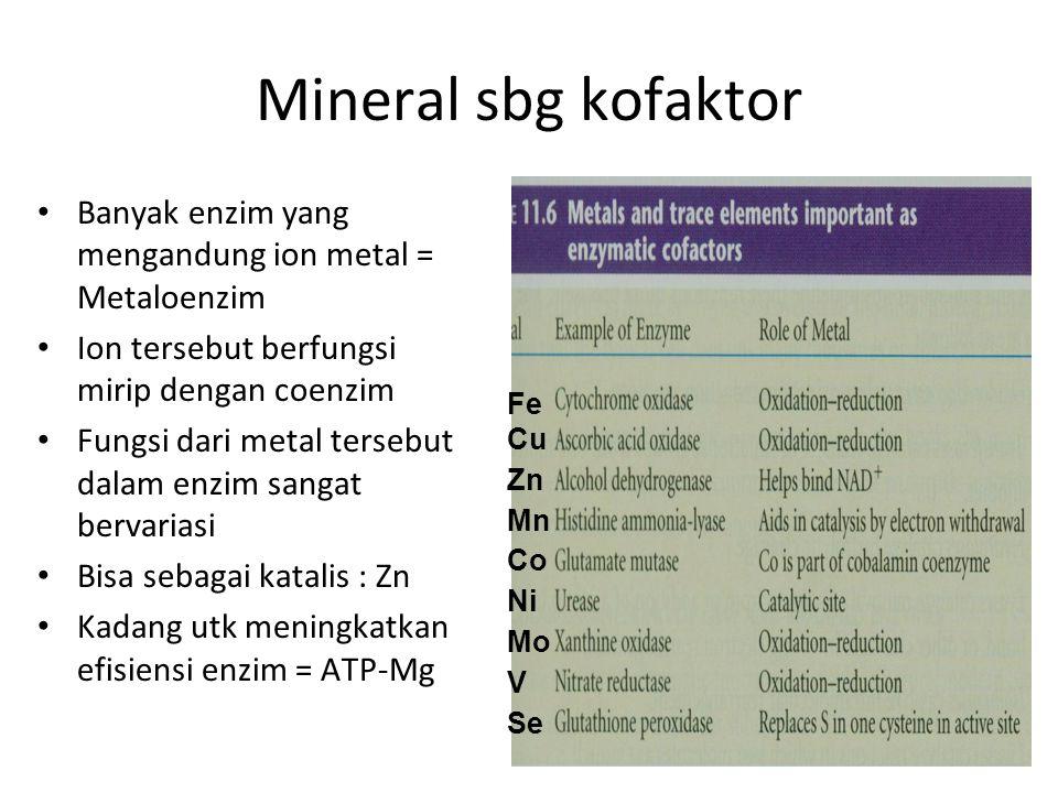 Mineral sbg kofaktor Banyak enzim yang mengandung ion metal = Metaloenzim Ion tersebut berfungsi mirip dengan coenzim Fungsi dari metal tersebut dalam enzim sangat bervariasi Bisa sebagai katalis : Zn Kadang utk meningkatkan efisiensi enzim = ATP-Mg Fe Cu Zn Mn Co Ni Mo V Se