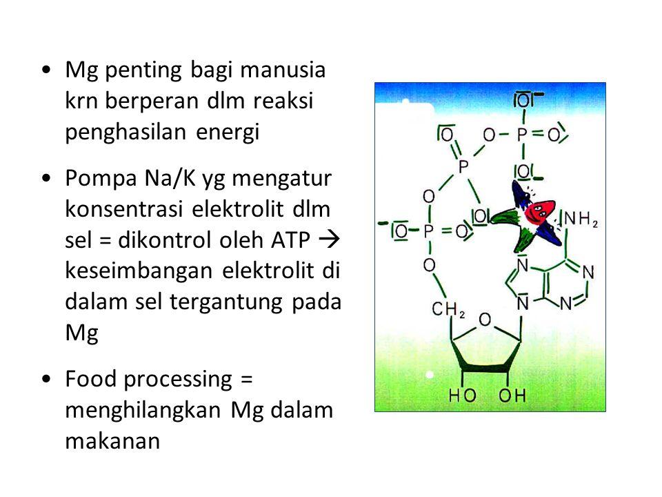 Mg penting bagi manusia krn berperan dlm reaksi penghasilan energi Pompa Na/K yg mengatur konsentrasi elektrolit dlm sel = dikontrol oleh ATP  keseimbangan elektrolit di dalam sel tergantung pada Mg Food processing = menghilangkan Mg dalam makanan