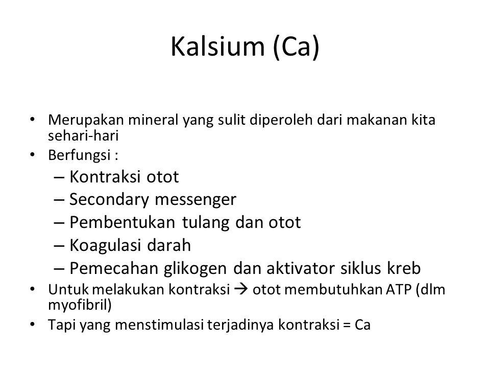 Kalsium (Ca) Merupakan mineral yang sulit diperoleh dari makanan kita sehari-hari Berfungsi : – Kontraksi otot – Secondary messenger – Pembentukan tulang dan otot – Koagulasi darah – Pemecahan glikogen dan aktivator siklus kreb Untuk melakukan kontraksi  otot membutuhkan ATP (dlm myofibril) Tapi yang menstimulasi terjadinya kontraksi = Ca