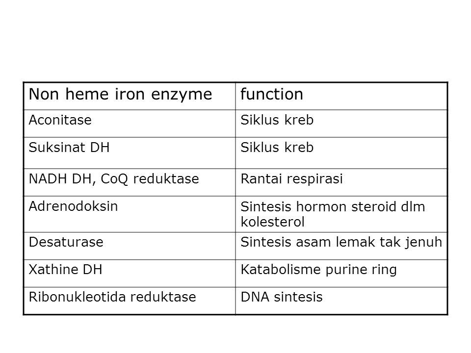 Non heme iron enzymefunction AconitaseSiklus kreb Suksinat DHSiklus kreb NADH DH, CoQ reduktaseRantai respirasi AdrenodoksinSintesis hormon steroid dlm kolesterol DesaturaseSintesis asam lemak tak jenuh Xathine DHKatabolisme purine ring Ribonukleotida reduktaseDNA sintesis