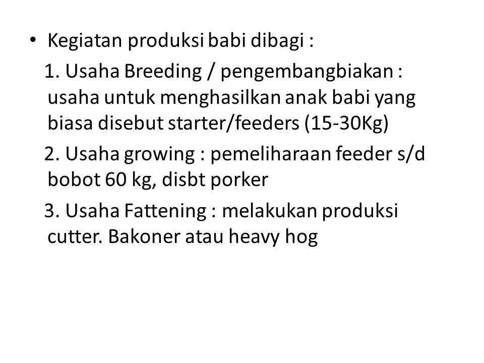 Kegiatan produksi babi dibagi : 1. Usaha Breeding / pengembangbiakan : usaha untuk menghasilkan anak babi yang biasa disebut starter/feeders (15-30Kg)