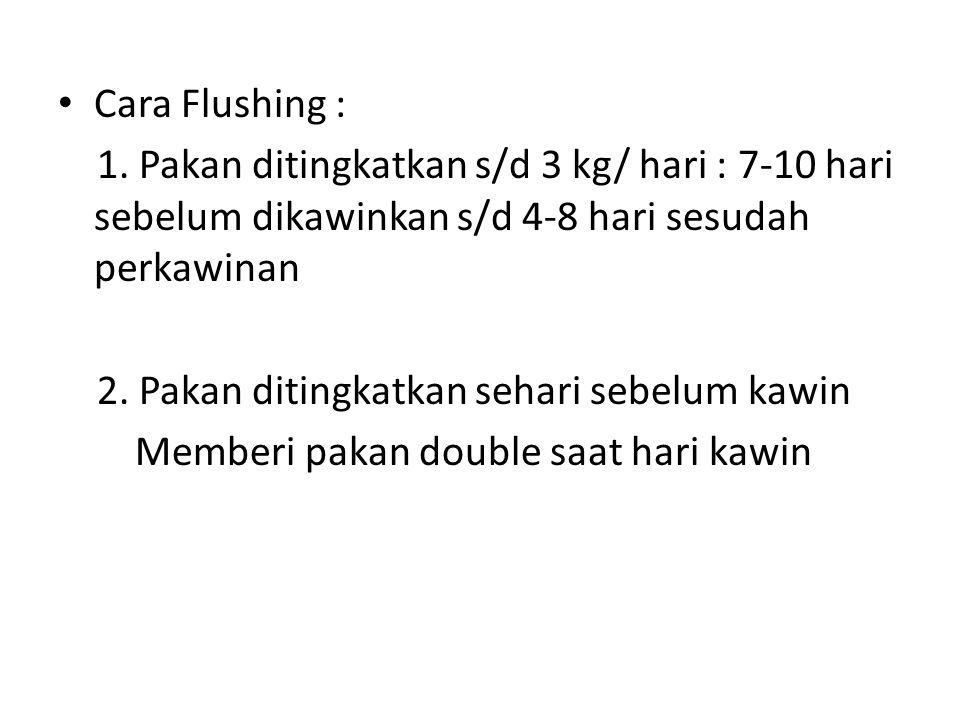 Cara Flushing : 1. Pakan ditingkatkan s/d 3 kg/ hari : 7-10 hari sebelum dikawinkan s/d 4-8 hari sesudah perkawinan 2. Pakan ditingkatkan sehari sebel
