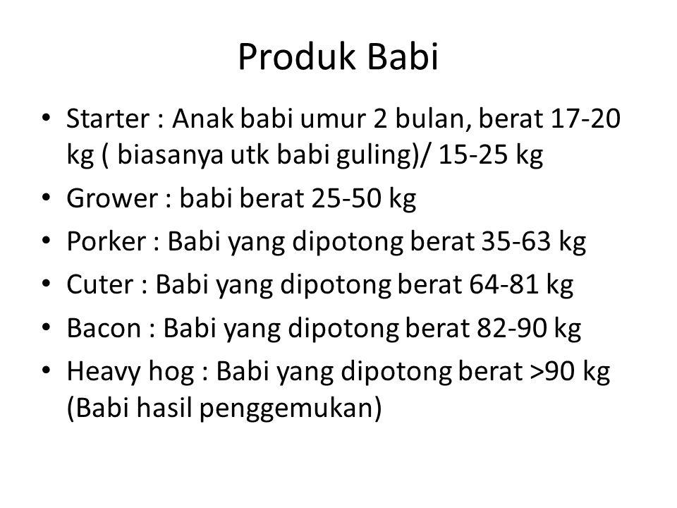 Produk Babi Starter : Anak babi umur 2 bulan, berat 17-20 kg ( biasanya utk babi guling)/ 15-25 kg Grower : babi berat 25-50 kg Porker : Babi yang dip