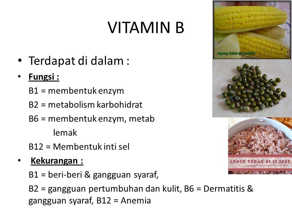 VITAMIN B Terdapat di dalam : Fungsi : B1 = membentuk enzym B2 = metabolism karbohidrat B6 = membentuk enzym, metab lemak B12 = Membentuk inti sel Kekurangan : B1 = beri-beri & gangguan syaraf, B2 = gangguan pertumbuhan dan kulit, B6 = Dermatitis & gangguan syaraf, B12 = Anemia