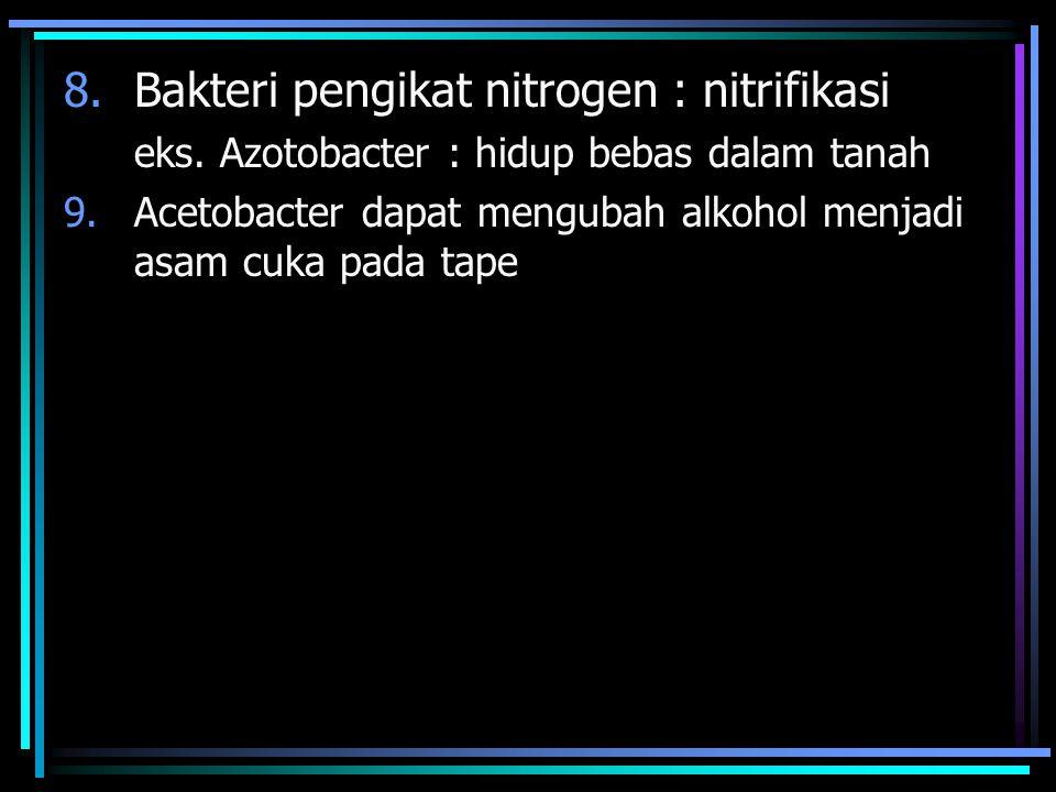 Manfaat Bakteri Menguntungkan 1. Pengikat nitrogen pada akar kacang : Rhizobium radicicola 2. Acetobacter xilenum : pembuat nata de coco 3. Lactobacil
