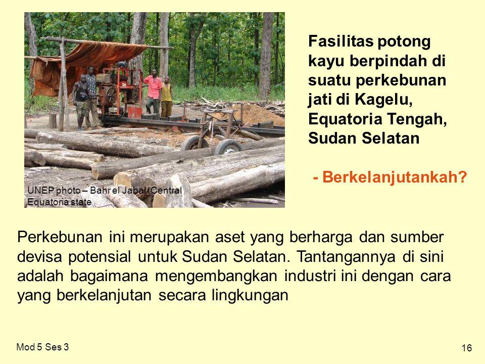 16 Mod 5 Ses 3 UNEP photo – Bahr el Jabal (Central Equatoria state Fasilitas potong kayu berpindah di suatu perkebunan jati di Kagelu, Equatoria Tengah, Sudan Selatan - Berkelanjutankah.