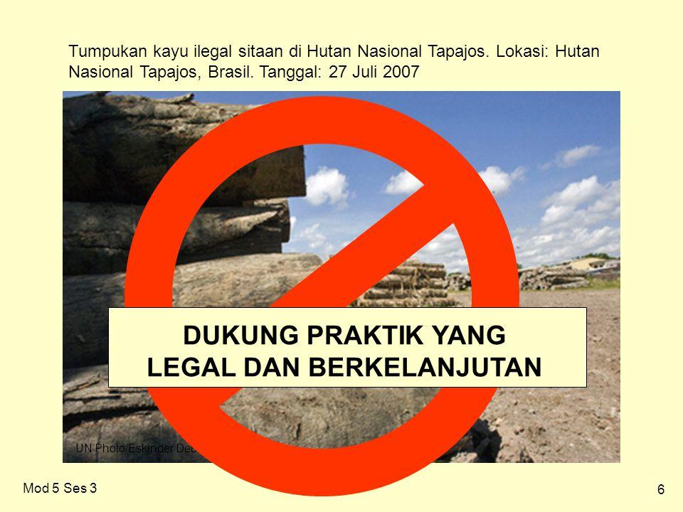 6 Mod 5 Ses 3 Tumpukan kayu ilegal sitaan di Hutan Nasional Tapajos.