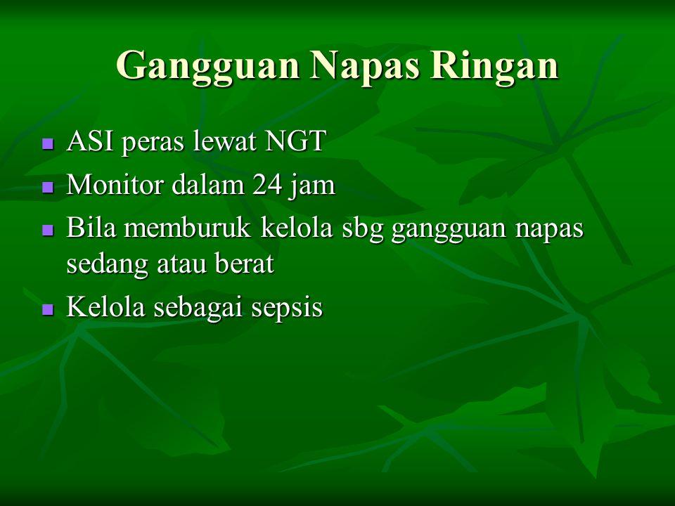 Gangguan Napas Ringan ASI peras lewat NGT ASI peras lewat NGT Monitor dalam 24 jam Monitor dalam 24 jam Bila memburuk kelola sbg gangguan napas sedang