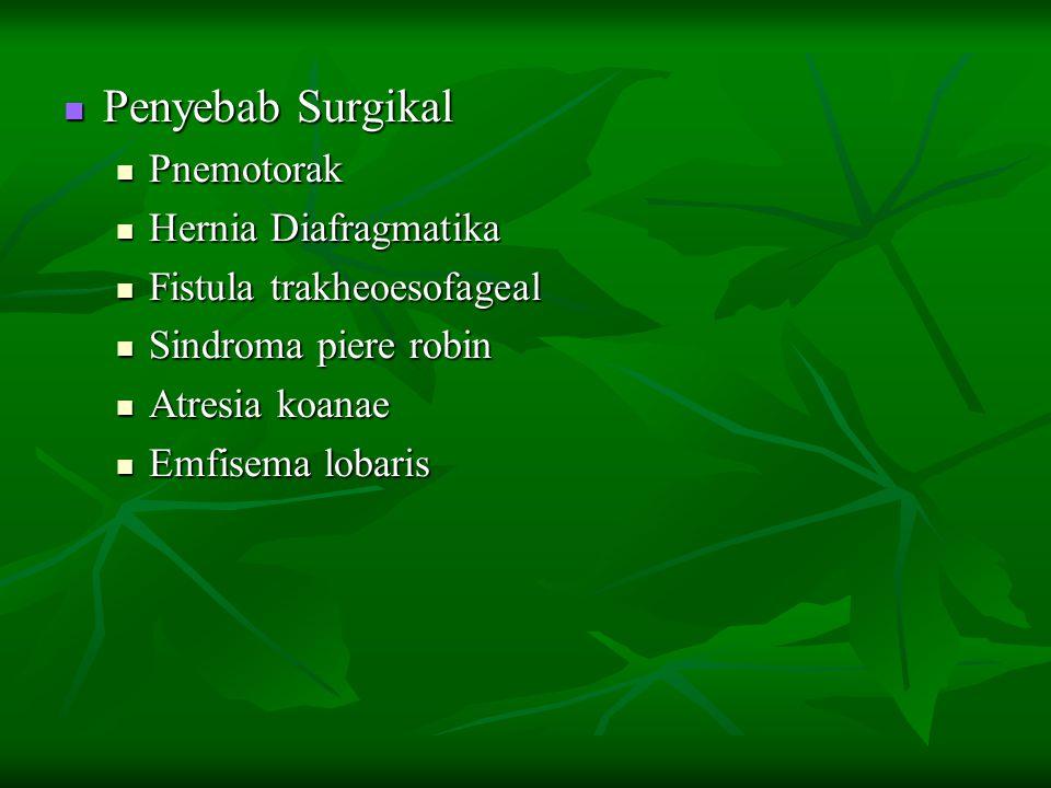 Penyebab Surgikal Penyebab Surgikal Pnemotorak Pnemotorak Hernia Diafragmatika Hernia Diafragmatika Fistula trakheoesofageal Fistula trakheoesofageal