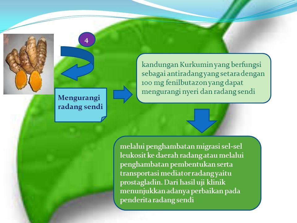 Mengurangi radang sendi kandungan Kurkumin yang berfungsi sebagai antiradang yang setara dengan 100 mg fenilbutazon yang dapat mengurangi nyeri dan ra