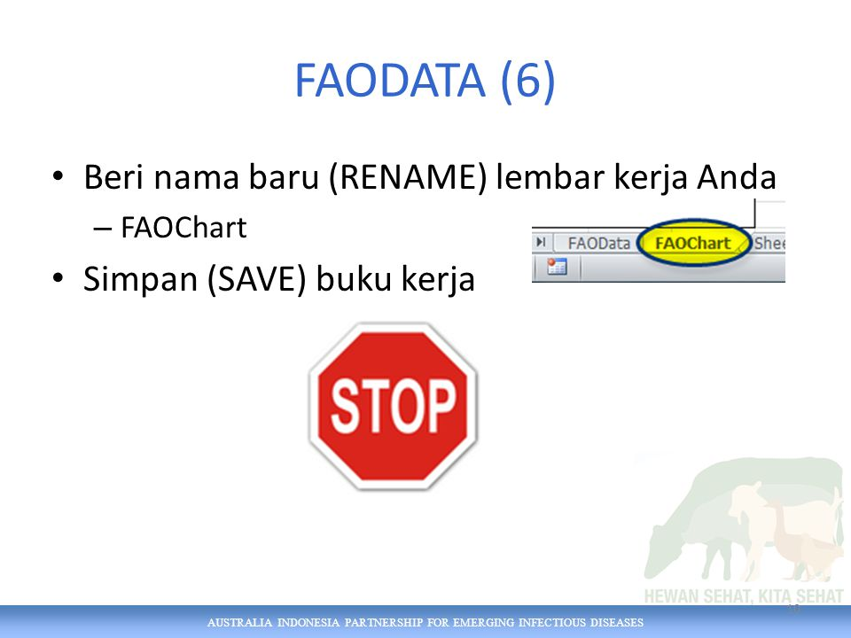 AUSTRALIA INDONESIA PARTNERSHIP FOR EMERGING INFECTIOUS DISEASES FAODATA (6) Beri nama baru (RENAME) lembar kerja Anda – FAOChart Simpan (SAVE) buku k