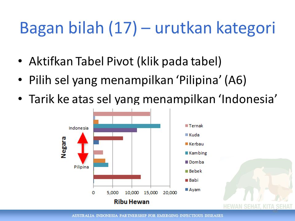 AUSTRALIA INDONESIA PARTNERSHIP FOR EMERGING INFECTIOUS DISEASES Bagan bilah (17) – urutkan kategori Aktifkan Tabel Pivot (klik pada tabel) Pilih sel