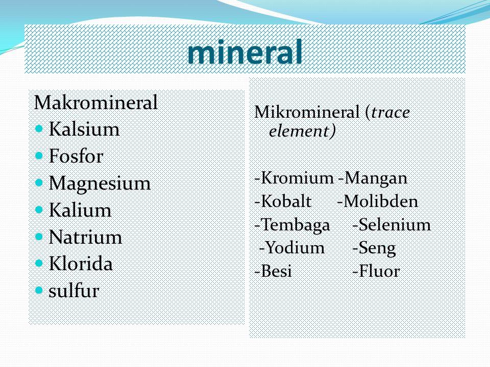 mineral Makromineral Kalsium Fosfor Magnesium Kalium Natrium Klorida sulfur Mikromineral (trace element) -Kromium -Mangan -Kobalt -Molibden -Tembaga-S