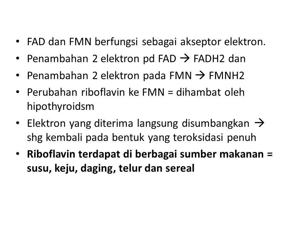 FAD dan FMN berfungsi sebagai akseptor elektron. Penambahan 2 elektron pd FAD  FADH2 dan Penambahan 2 elektron pada FMN  FMNH2 Perubahan riboflavin