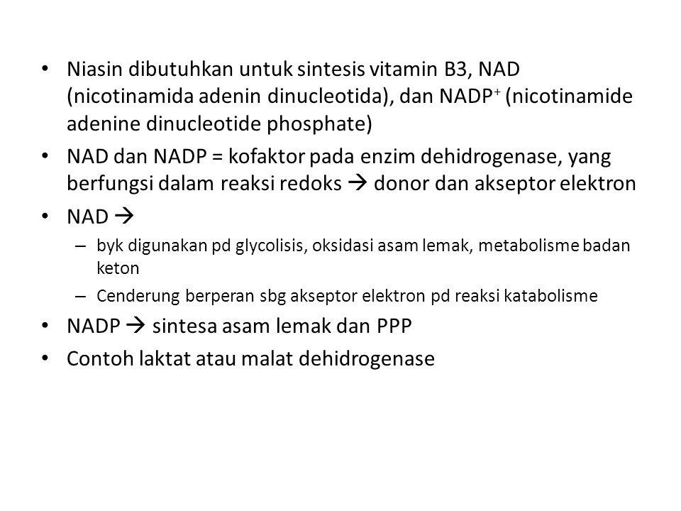 Niasin dibutuhkan untuk sintesis vitamin B3, NAD (nicotinamida adenin dinucleotida), dan NADP + (nicotinamide adenine dinucleotide phosphate) NAD dan NADP = kofaktor pada enzim dehidrogenase, yang berfungsi dalam reaksi redoks  donor dan akseptor elektron NAD  – byk digunakan pd glycolisis, oksidasi asam lemak, metabolisme badan keton – Cenderung berperan sbg akseptor elektron pd reaksi katabolisme NADP  sintesa asam lemak dan PPP Contoh laktat atau malat dehidrogenase