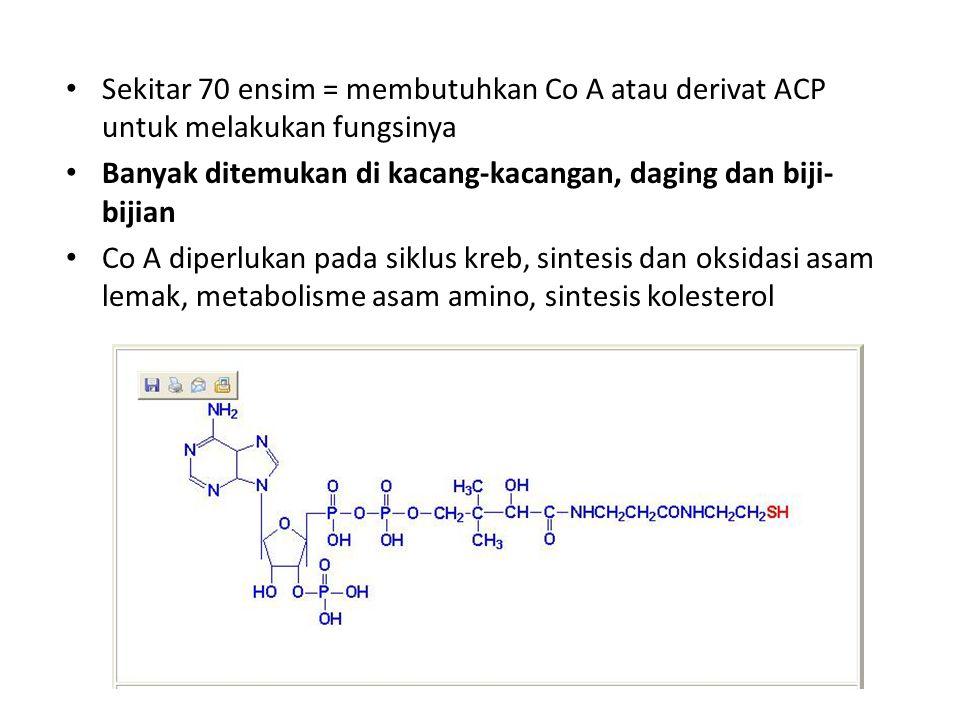 Sekitar 70 ensim = membutuhkan Co A atau derivat ACP untuk melakukan fungsinya Banyak ditemukan di kacang-kacangan, daging dan biji- bijian Co A diperlukan pada siklus kreb, sintesis dan oksidasi asam lemak, metabolisme asam amino, sintesis kolesterol