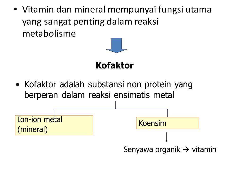 Vitamin dan mineral mempunyai fungsi utama yang sangat penting dalam reaksi metabolisme Kofaktor Kofaktor adalah substansi non protein yang berperan dalam reaksi ensimatis metal Ion-ion metal (mineral) Koensim Senyawa organik  vitamin