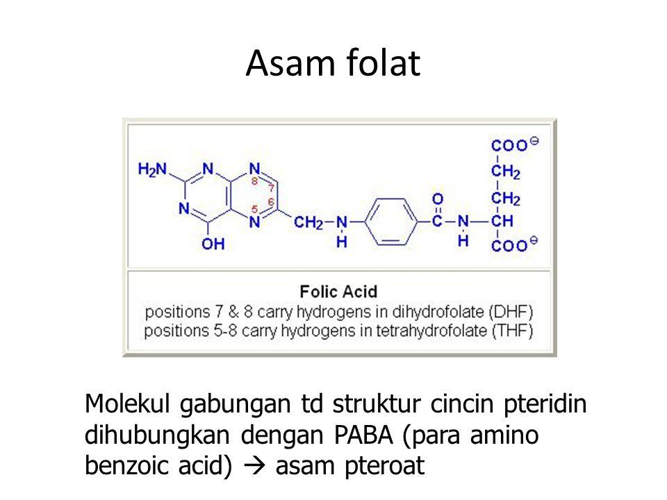 Asam folat Molekul gabungan td struktur cincin pteridin dihubungkan dengan PABA (para amino benzoic acid)  asam pteroat