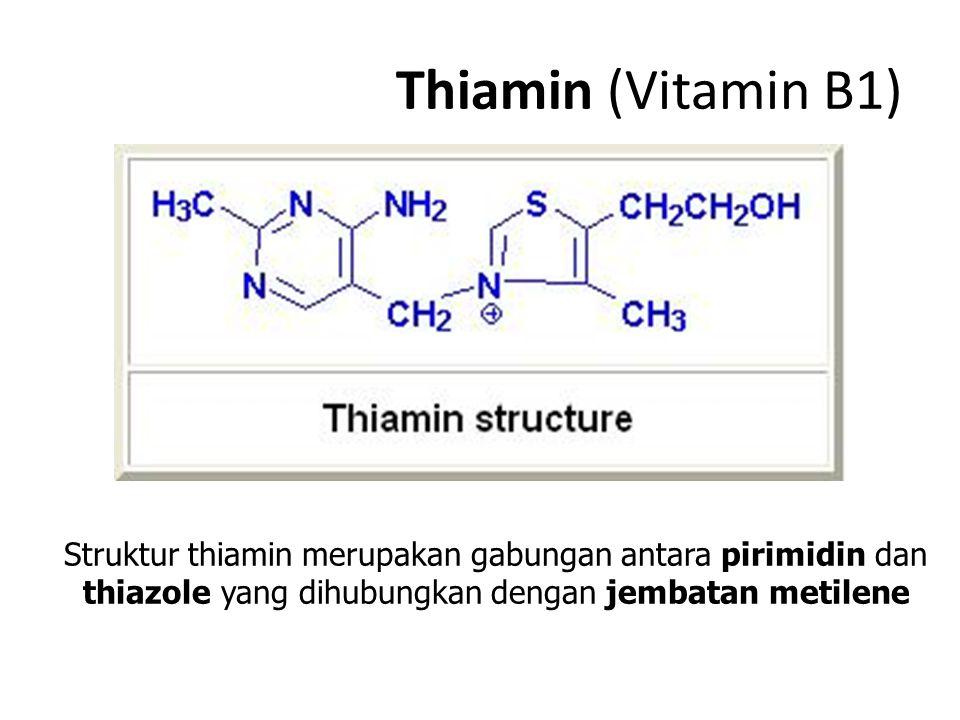 Thiamin (Vitamin B1) Struktur thiamin merupakan gabungan antara pirimidin dan thiazole yang dihubungkan dengan jembatan metilene