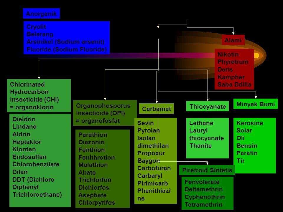 Anorganik Organik Alami Sintetis Chlorinated Hydrocarbon Insecticide (CHI) = organoklorin Organophosporus Insecticide (OPI) = organofosfat Carbamat Th