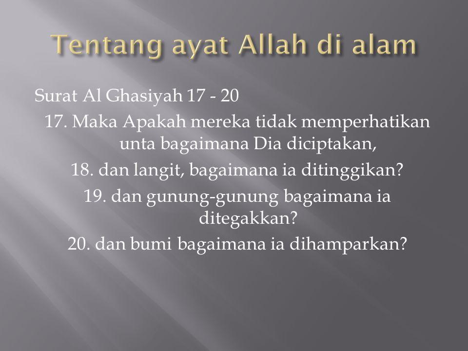 Surat Al Ghasiyah 17 - 20 17. Maka Apakah mereka tidak memperhatikan unta bagaimana Dia diciptakan, 18. dan langit, bagaimana ia ditinggikan? 19. dan
