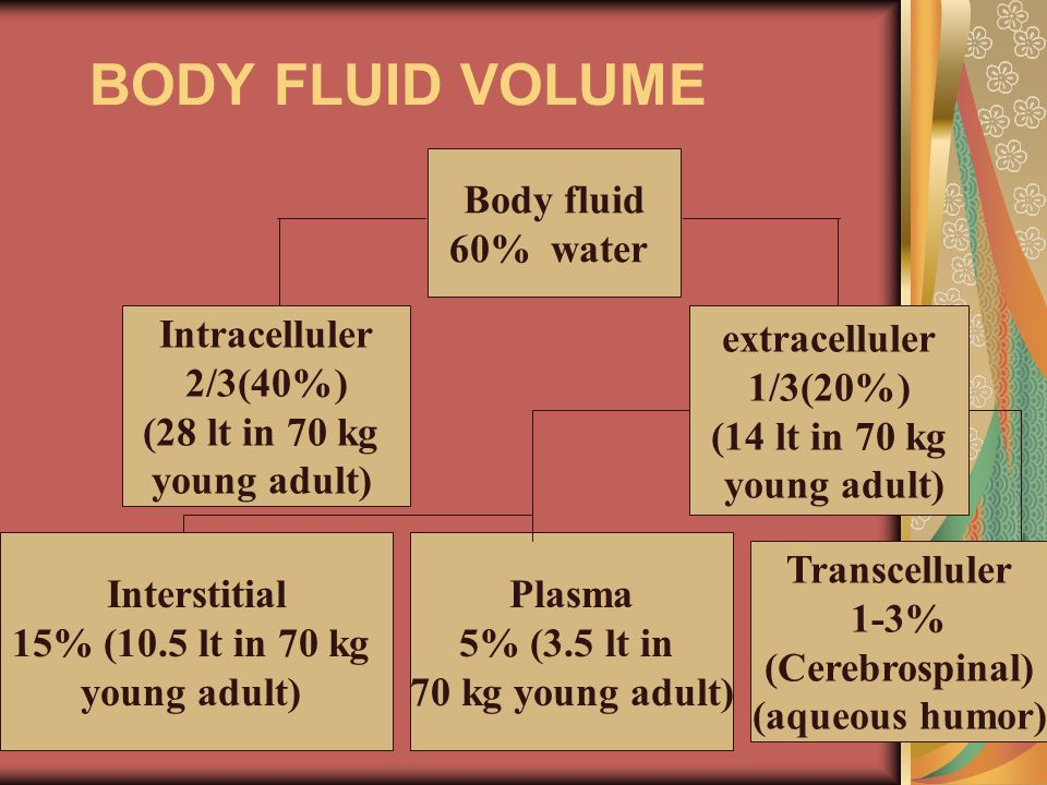 BODY FLUID VOLUME Body fluid 60% water Intracelluler 2/3(40%) (28 lt in 70 kg young adult) Plasma 5% (3.5 lt in 70 kg young adult) Transcelluler 1-3%