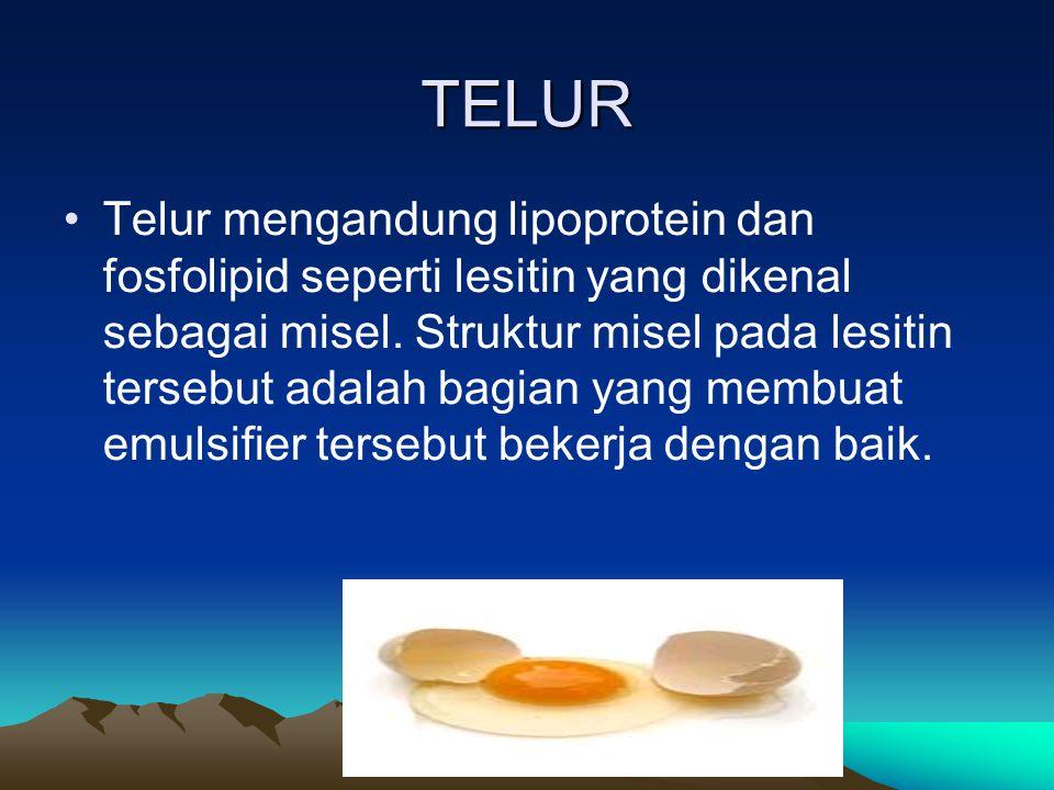 TELUR Telur mengandung lipoprotein dan fosfolipid seperti lesitin yang dikenal sebagai misel. Struktur misel pada lesitin tersebut adalah bagian yang