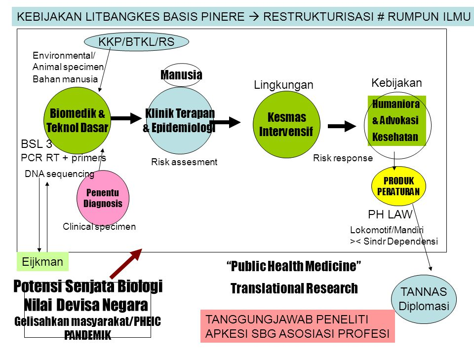 "Penentu Diagnosis Biomedik & Teknol Dasar PRODUK PERATURAN ""Public Health Medicine"" Translational Research Humaniora & Advokasi Kesehatan Kesmas Inter"
