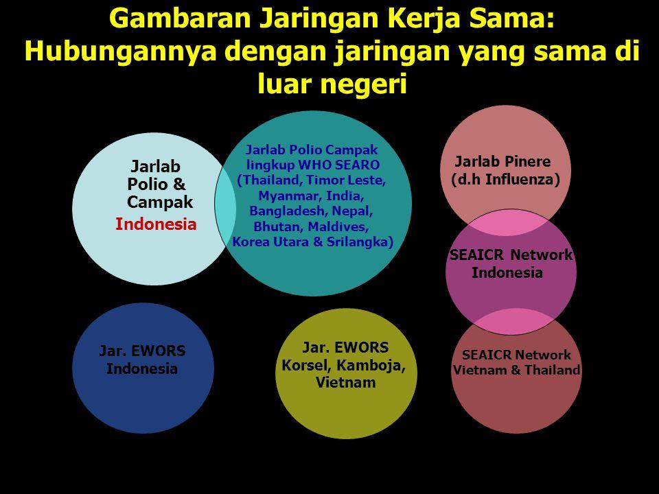 Gambaran Jaringan Kerja Sama: Hubungannya dengan jaringan yang sama di luar negeri Jarlab Polio & Campak Indonesia Jarlab Polio Campak lingkup WHO SEA