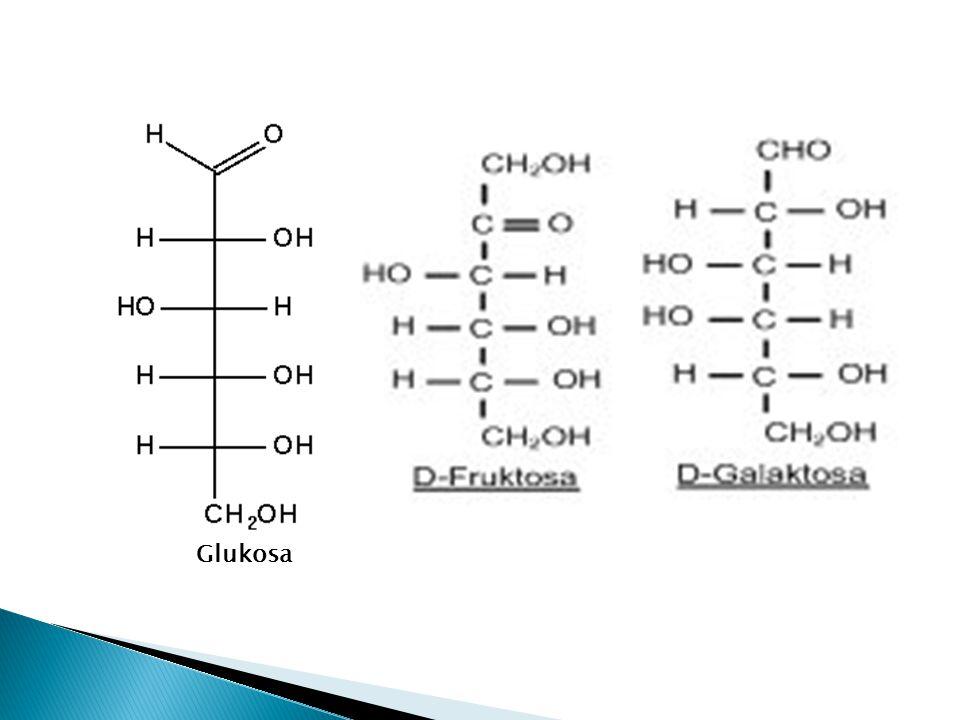 Fruktosa dan Galaktosa  Walaupun fruktosa dan galaktosa mempunyai rumus formula kimia yang sama dengan glukosa (C 6 H 12 0 6 ), tetapi berbeda dalam susunan atom hidrogen dan oksigen pada rantai karbonnya.