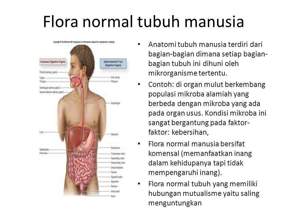 Flora normal tubuh manusia Anatomi tubuh manusia terdiri dari bagian-bagian dimana setiap bagian- bagian tubuh ini dihuni oleh mikrorganisme tertentu.