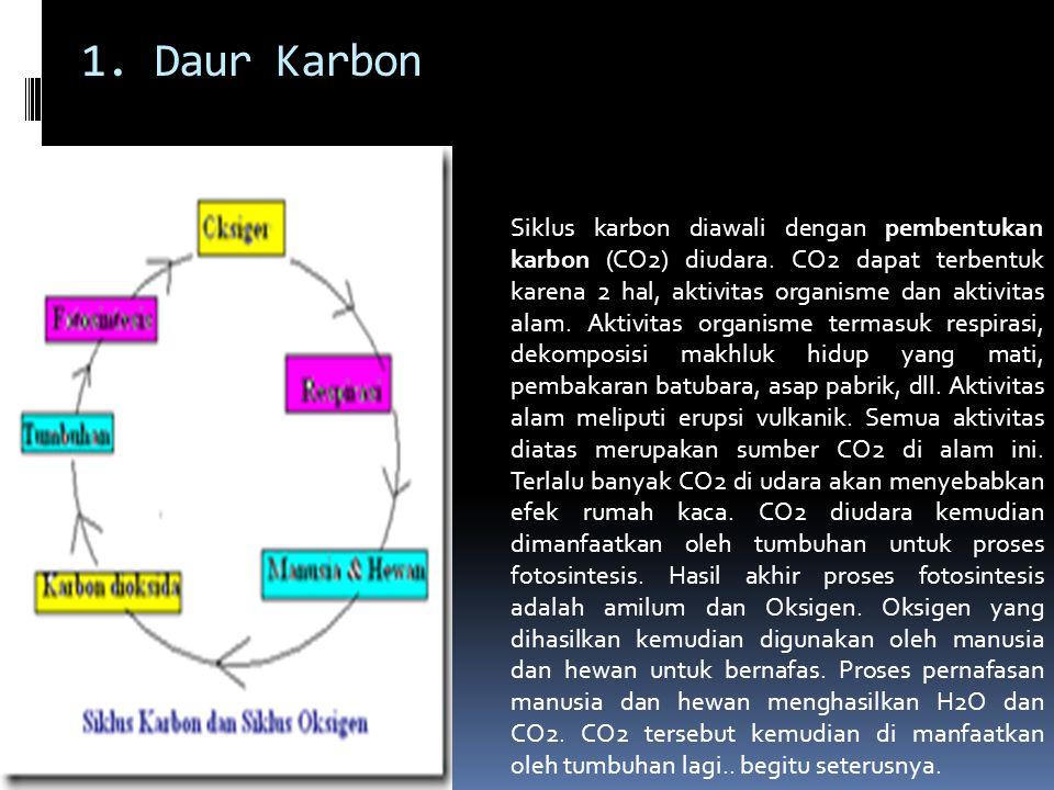 1. Daur Karbon Siklus karbon diawali dengan pembentukan karbon (CO2) diudara. CO2 dapat terbentuk karena 2 hal, aktivitas organisme dan aktivitas alam