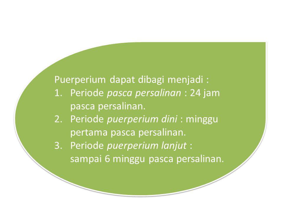 Puerperium dapat dibagi menjadi : 1.Periode pasca persalinan : 24 jam pasca persalinan. 2.Periode puerperium dini : minggu pertama pasca persalinan. 3