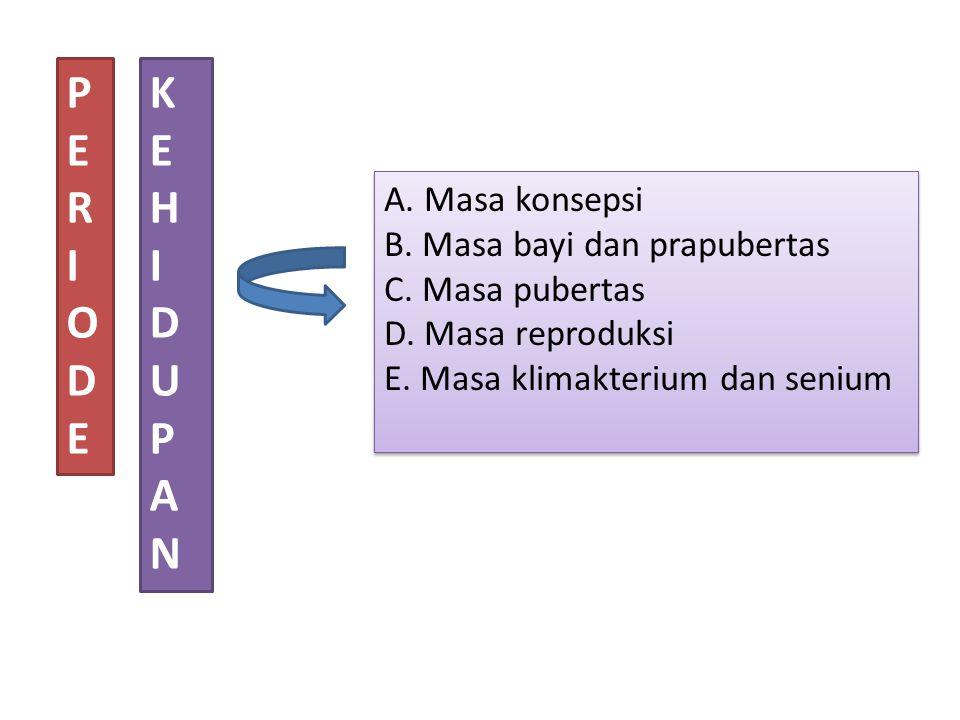 PERIODEPERIODE KEHIDUPANKEHIDUPAN A. Masa konsepsi B. Masa bayi dan prapubertas C. Masa pubertas D. Masa reproduksi E. Masa klimakterium dan senium A.