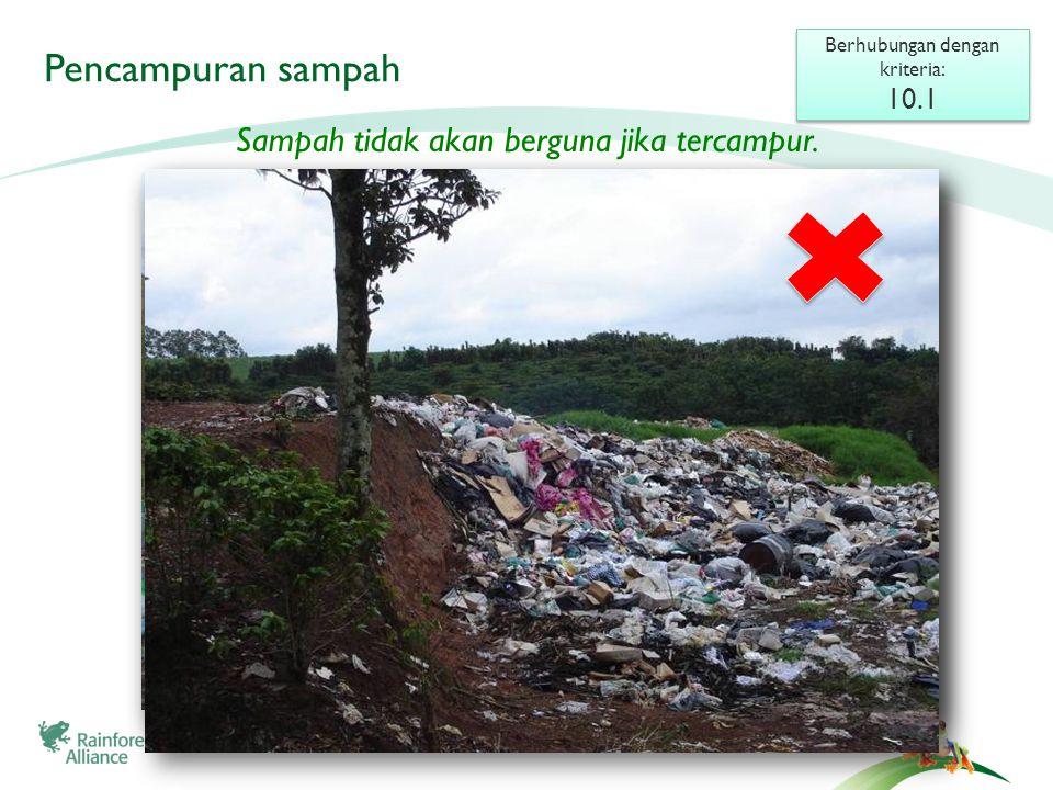 Pengelompokan dan daur ulang Berhubungan dengan kriteria: 10.1 Berhubungan dengan kriteria: 10.1 Sampah dapat bernilai jika Anda memilah dan mendaur ulang-nya.