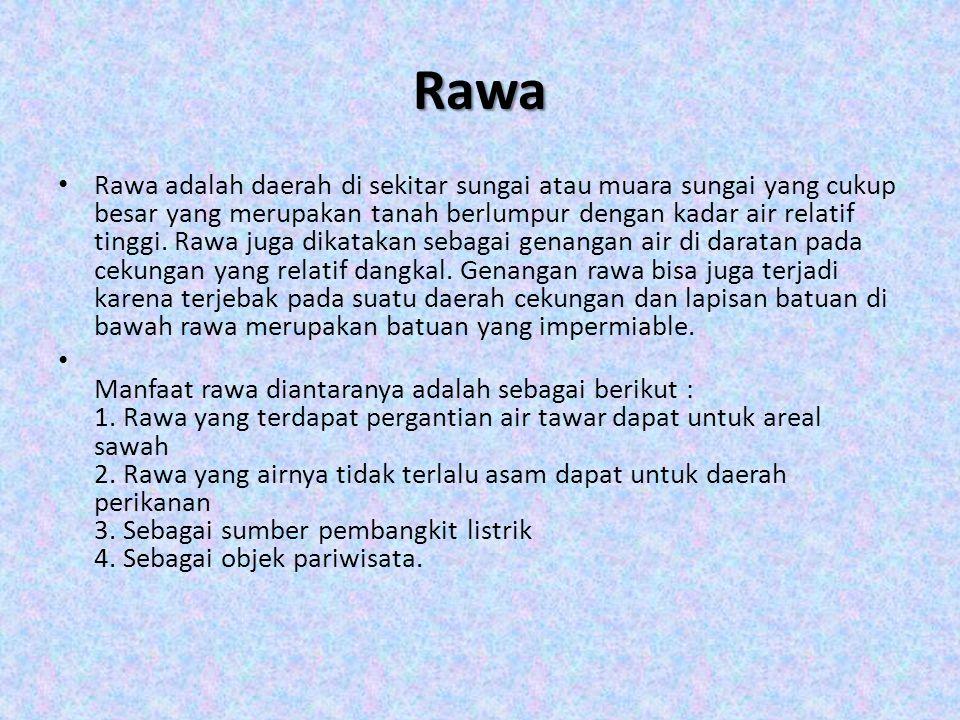 Rawa Rawa adalah daerah di sekitar sungai atau muara sungai yang cukup besar yang merupakan tanah berlumpur dengan kadar air relatif tinggi. Rawa juga