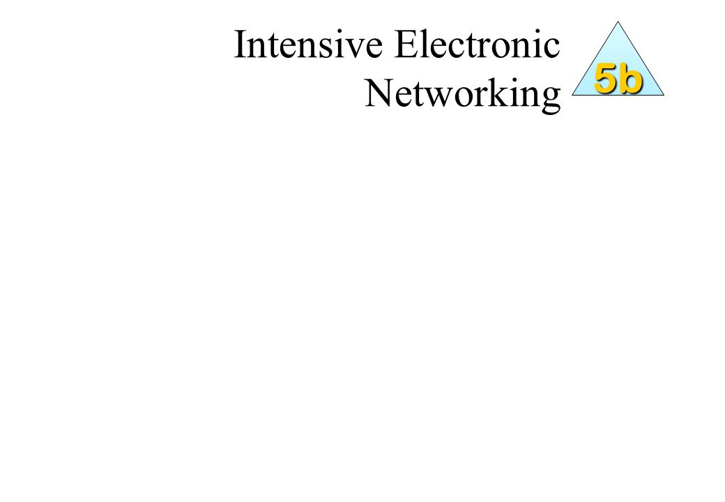 Intensive Electronic Networking 5b