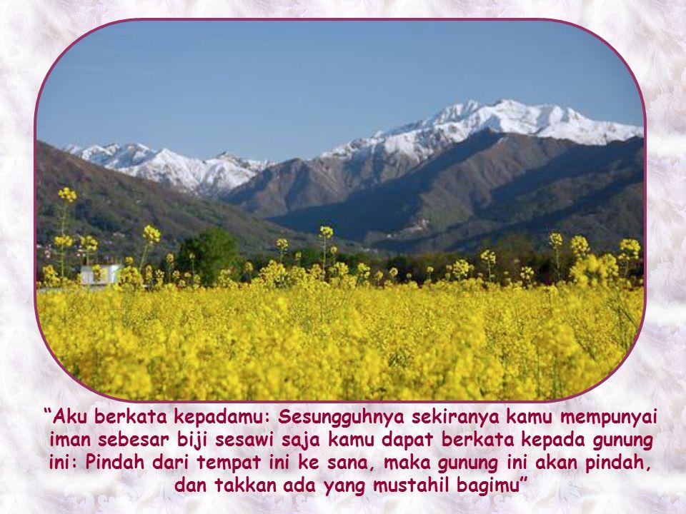 Iman inilah, yang dapat memindahkan gunung, yang tidak menjadi milik eksklusif orang tertentu saja. Iman ini dapat dan wajib dimiliki oleh setiap oran