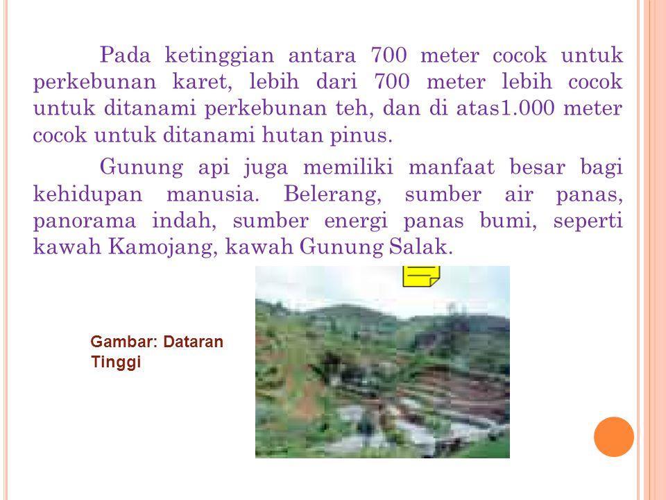 C. DAERAH DATARAN TINGGI Dengan relief yang beranekaragam, Indonesia juga memiliki wilayah yang beriklim. Junghun telah membuat zonasi yang didasarkan