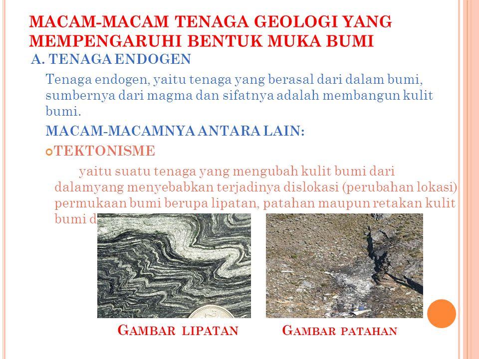 MACAM-MACAM TENAGA GEOLOGI YANG MEMPENGARUHI BENTUK MUKA BUMI A.