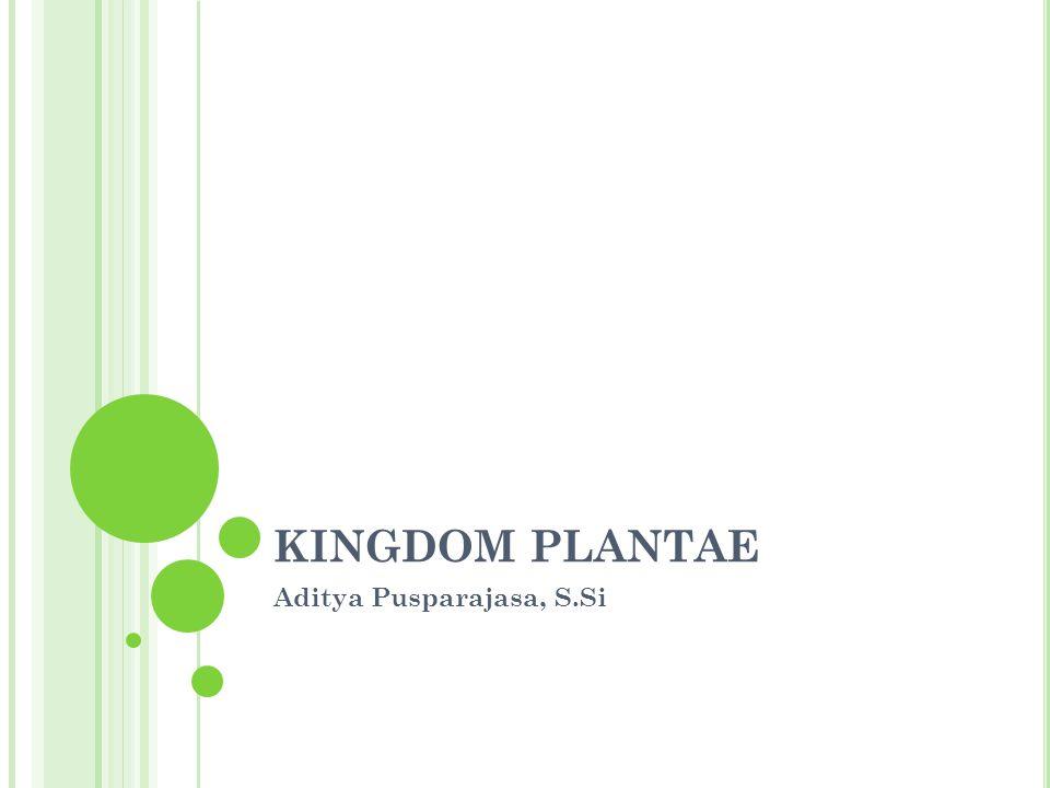 KINGDOM PLANTAE Aditya Pusparajasa, S.Si