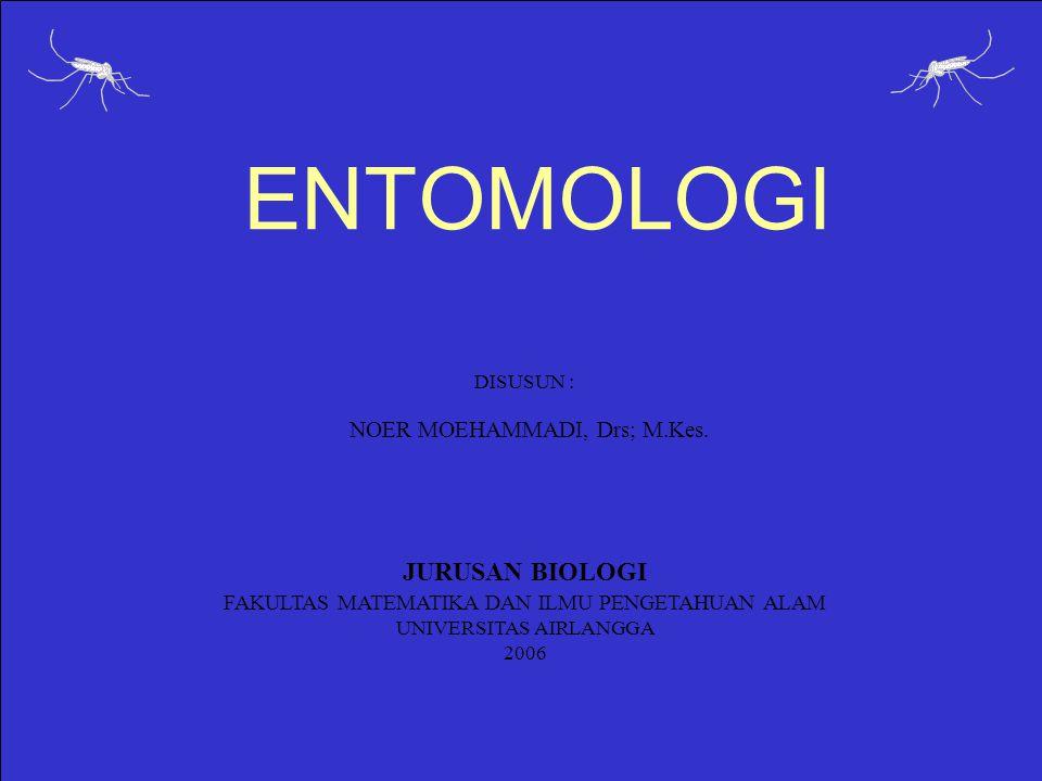 ENTOMOLOGI DISUSUN : NOER MOEHAMMADI, Drs; M.Kes. JURUSAN BIOLOGI FAKULTAS MATEMATIKA DAN ILMU PENGETAHUAN ALAM UNIVERSITAS AIRLANGGA 2006