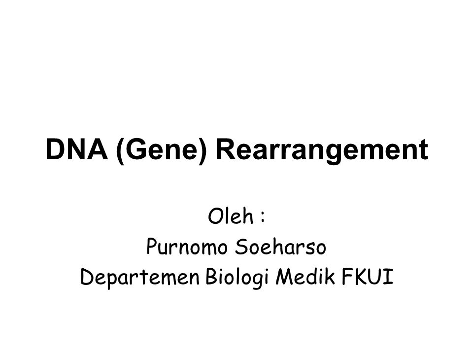DNA (Gene) Rearrangement Oleh : Purnomo Soeharso Departemen Biologi Medik FKUI