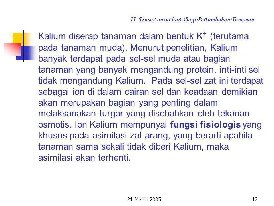 21 Maret 200511 II. Unsur-unsur hara Bagi Pertumbuhan Tanaman c. Kalium (K) Elemen ini dapat dikatakan bukan elemen yang langsung pembentuk bahan orga